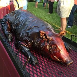 BBQ pig