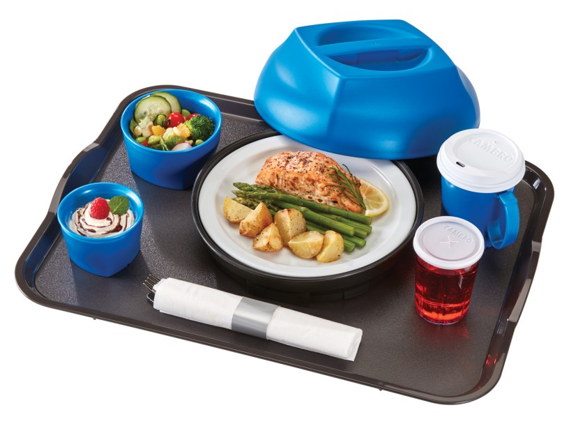 Harbor with Handle Tray Blue with Dome