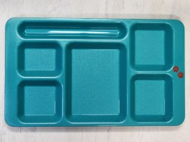 Camwear 2x2 Compartment Tray in Teal (1596CW)