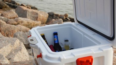 Photo of 10 Best Coolers for Camping With Wheels