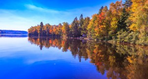 Colorful Fall Leaves Reflecting Off A Blue Lake