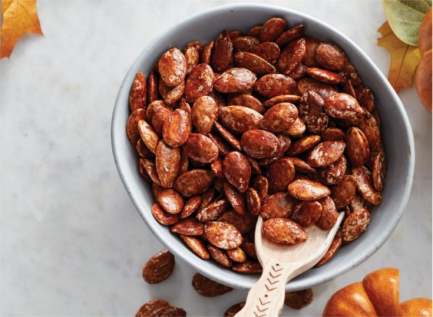 cinnamon pumpkin seeds - camping snacks ideas