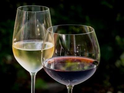 come degustare vino bianco o rosso