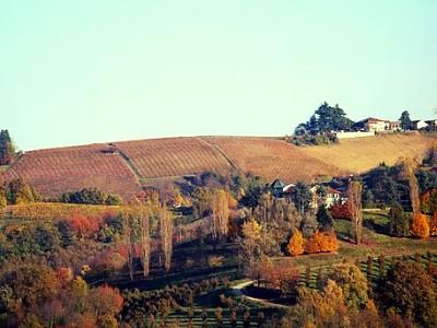 vista di Barolo nelle Langhe patrimonio Unesco