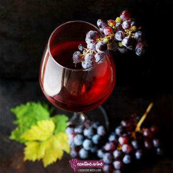 Trasparenza nell'analisi del vino