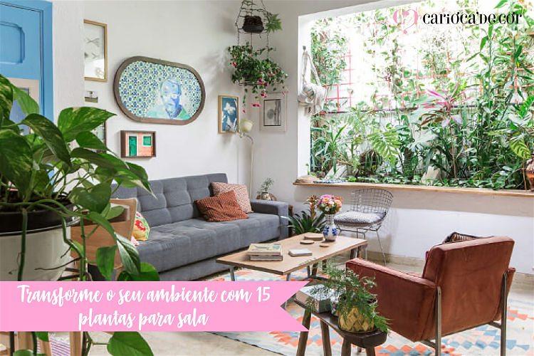 decorações de ambientes com plantas