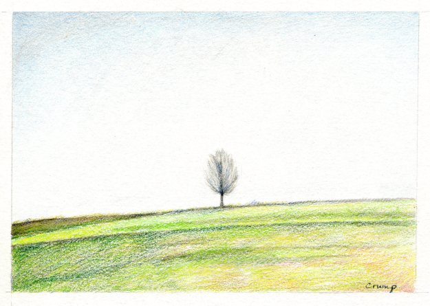 The Tree, Carol Crump Bryner, colored pencil