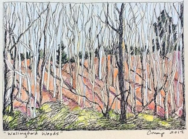 """Wallingford Woods, Carol Crump Bryner, pen and colored pencil, 2012"