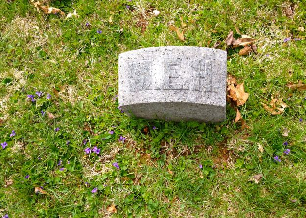 Mary E. Hart's grave stone with violets, May 2014