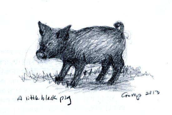 """""""A Little Black Pig,"""" Carol Crump Bryner, pencil, 2013"""