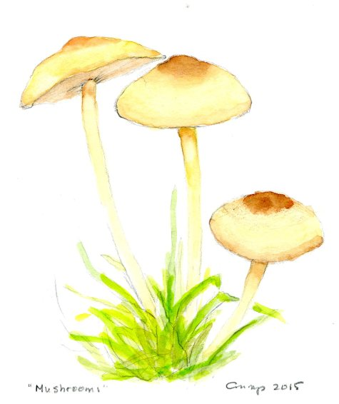 """Mushrooms,"" Carol Crump Bryner, gouache, 2015"