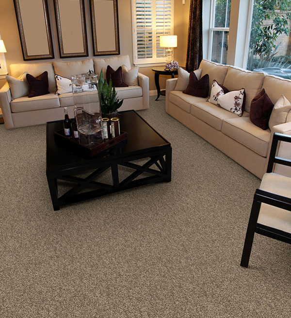 Dixie Home Carpet with Stainmaster Pet Protect   Carpet Express Blog hearts content room