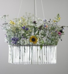 un lampadario sospeso con tornato di provette contenenti fiori freschi