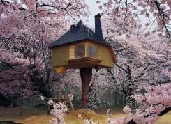 una casa costruita sull'albero, tra peschi in fiore