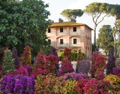 alt: veduta dell'esterno del casale marrone e alcune piante in fiore