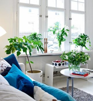 inquinamento in casa come avere aria sana un soggiorno illuminato dalla luce naturale
