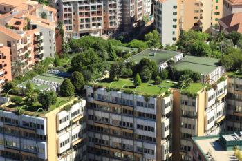 citta-ecosostenibili-tetti-verdi