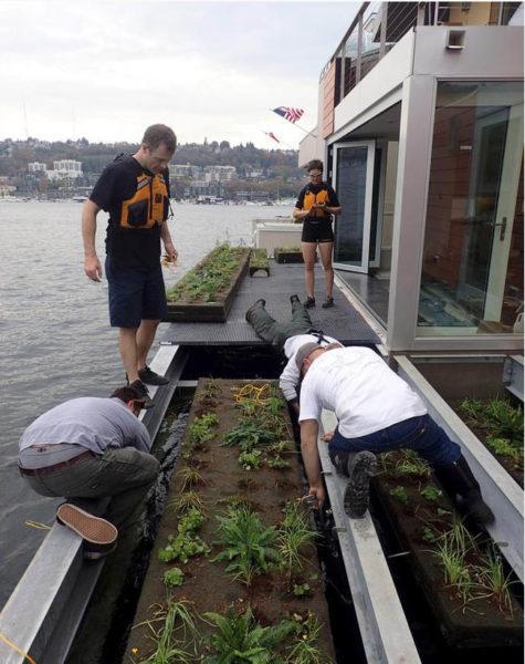 la casa galleggiante che purifica l'acqua - orto galleggiante di Houseboat H