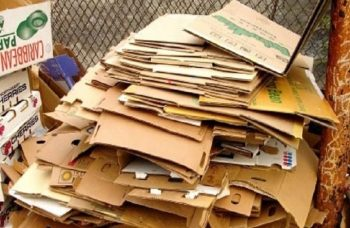 riciclo di carta e cartone nella raccolta differenziata