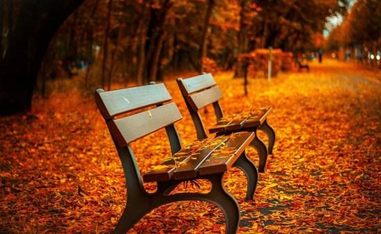 Fall in US