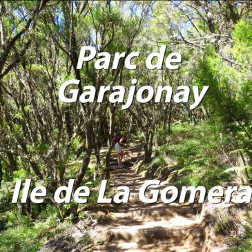 Ile de la Gomera – Parc du Garajonay