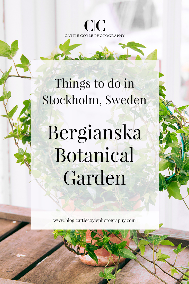 Things to do in Stockholm, Sweden | Bergianska Botanical Garden is one of my absolute favorite places in Stockholm and I always visit several times when I'm in town. It's gorgeous and peaceful, easy to get to, and there is so much to see.