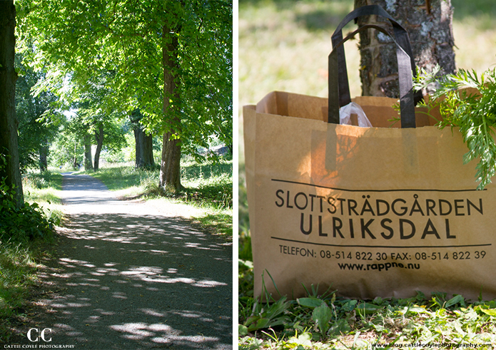 Ulriksdal Garden Centre road and shopping bag by Cattie Coyle Photography
