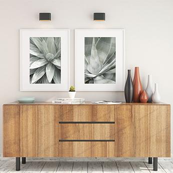 Succulent art prints by Cattie Coyle Photography