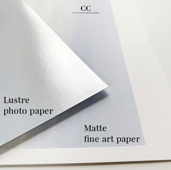 Buying Art Online: Lustre and matte paper comparison Cattie Coyle Photography