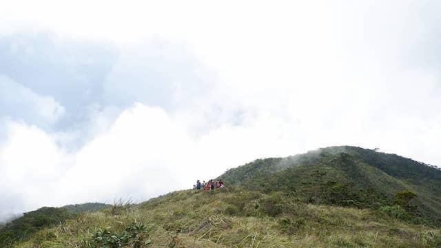 Mount Hamiguitan Range Wildlife Sanctuary