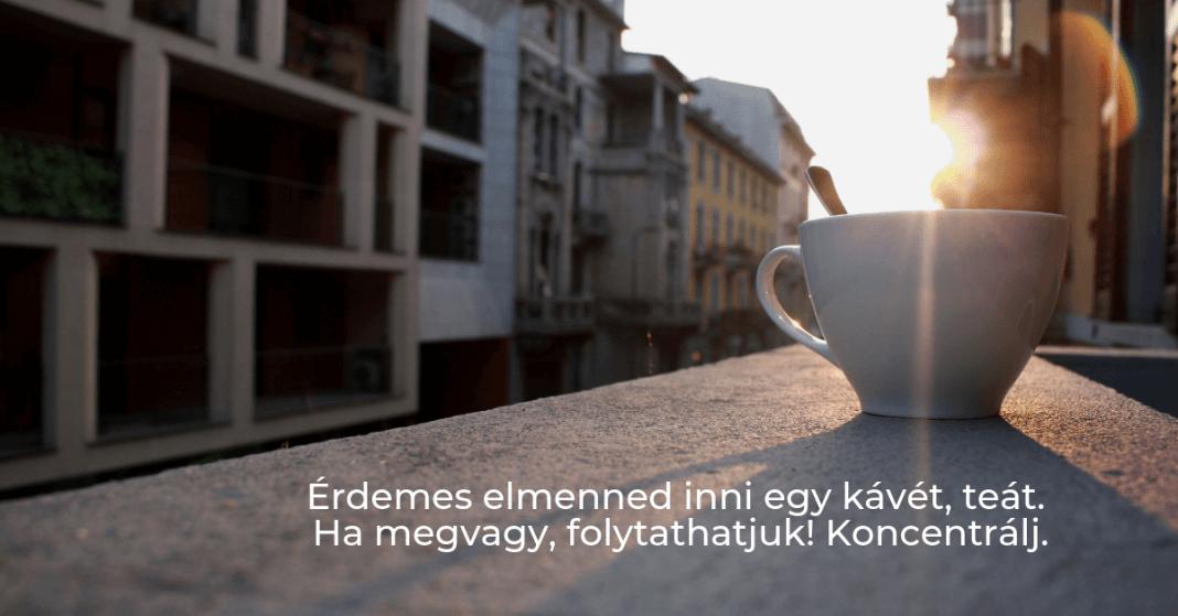 Eredménykimutatás kávészünet