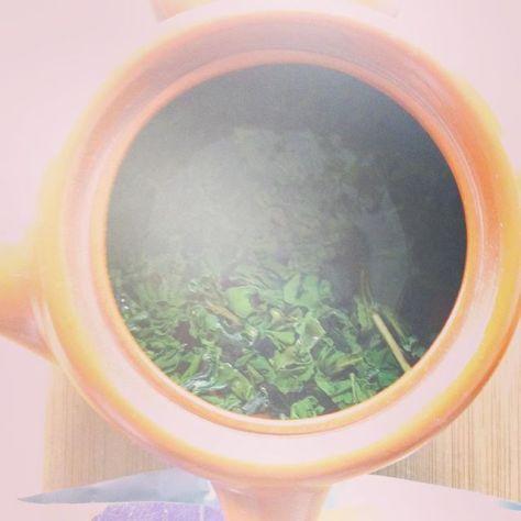 急須を覗くと何が見えるんだろう?レンズが曇ってしまうんだ。 #日本茶 #釜炒り茶 #種ノ箱 (Instagram)
