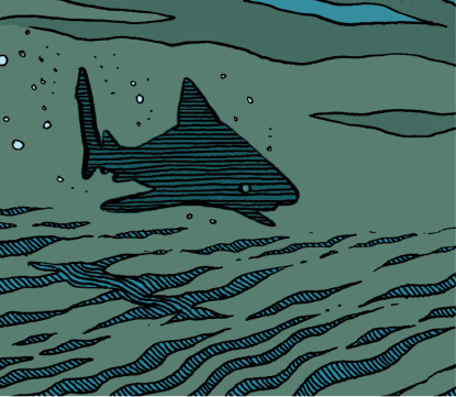 Topo Requins