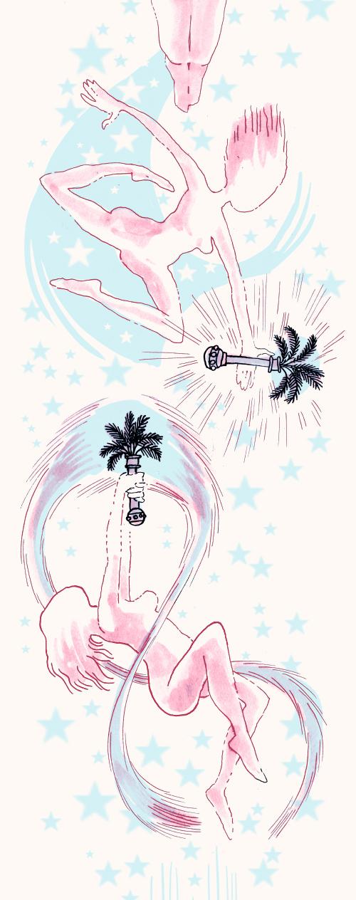 Les sorts et les palmiers dattiers
