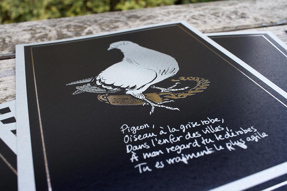 Pigeon oiseau à la grise robe c'est arrivé près de chez vous