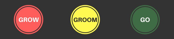 Grow-Groom-Go-Training & Development