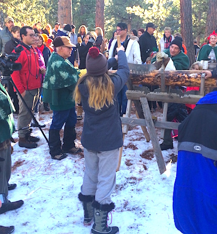 sawing the log sm