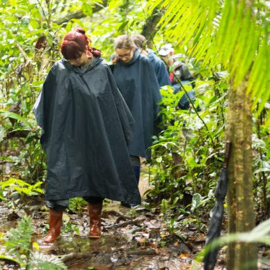 Group Of Tourists In Cuyabeno Wildlife Reserve Ecuador Dressed Up In Rain Ponchos