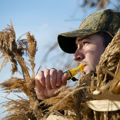 A hunter blowing a duck call