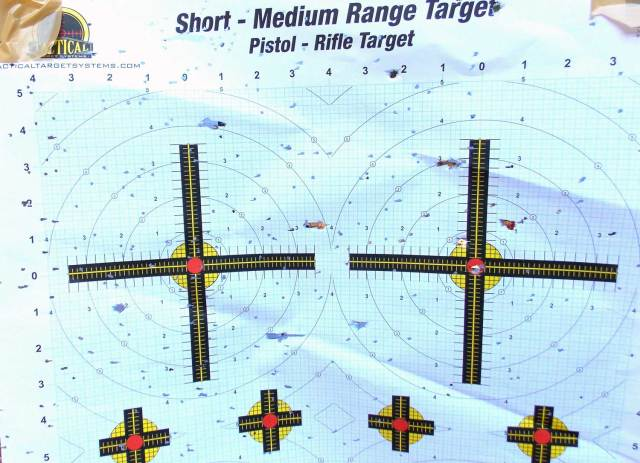 2 paper targets with multiple holes from birdshot