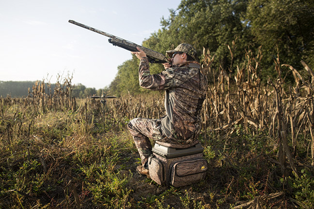 0a50e9fb8e56d Dove hunting isn't complicated, so don't make it that way! - Cheaper ...