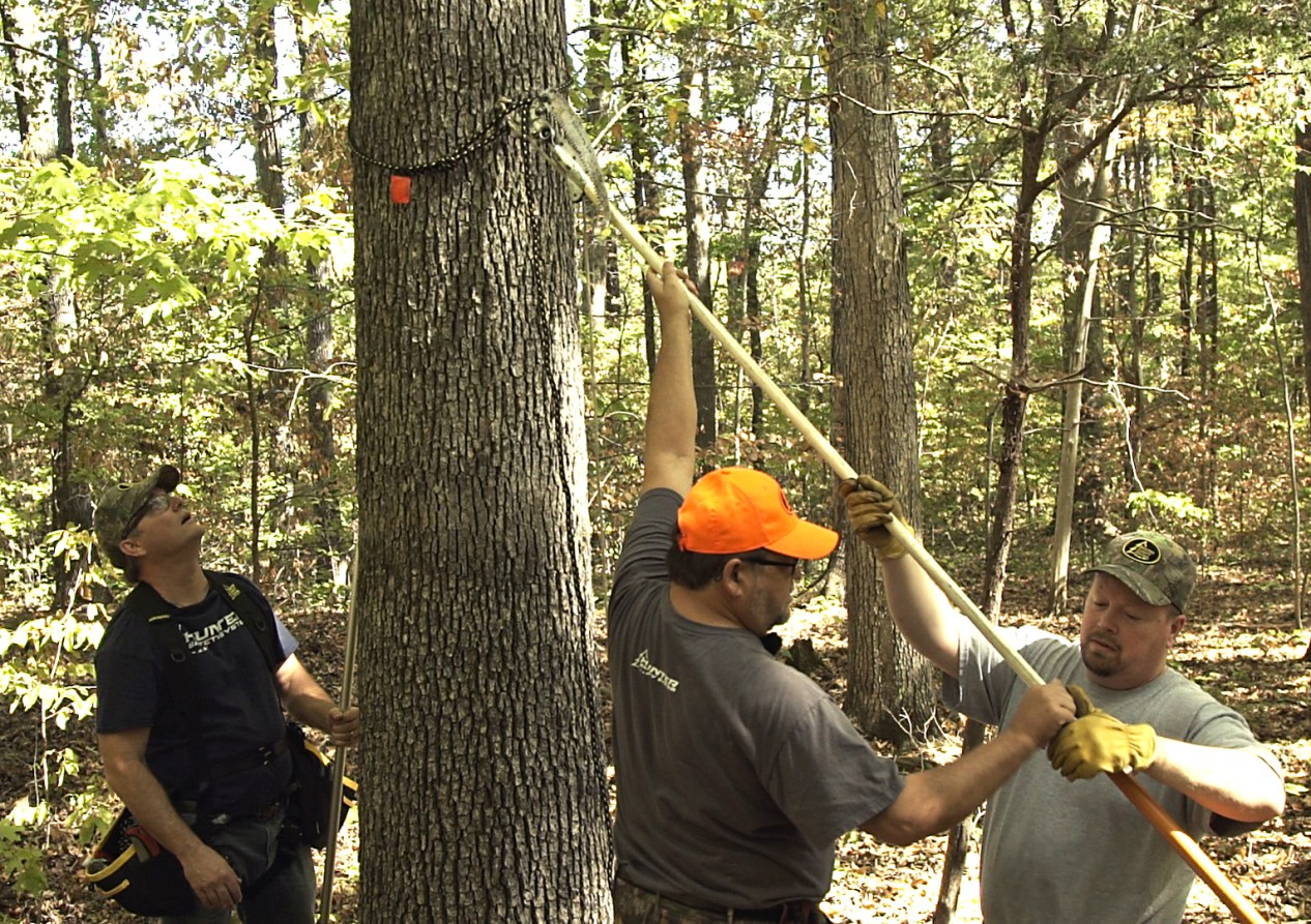 Hunters hanging a safety line