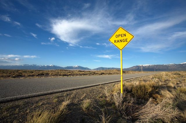 """Picture shows an open concrete road through a plain, a blue sky with whispy clouds and a sign that reads, """"open road."""""""