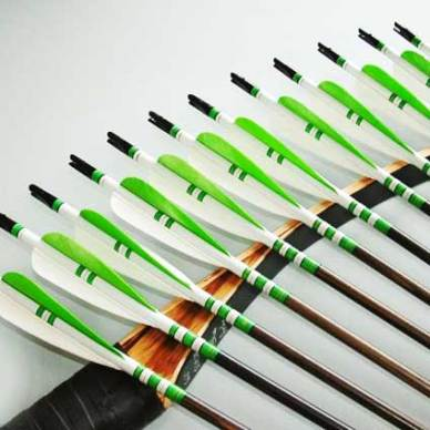 Traditional bow and custom arrows