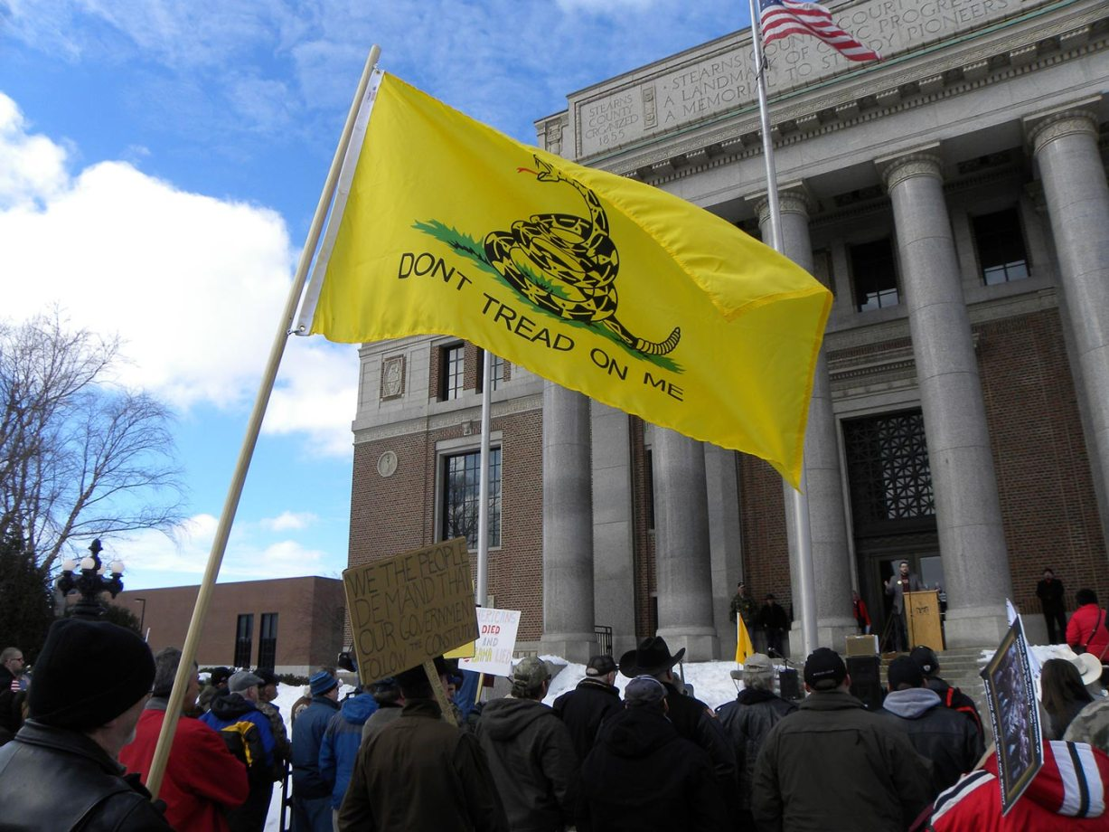 """Protestors outside a state building holding a """"don't tread on me"""" flag"""