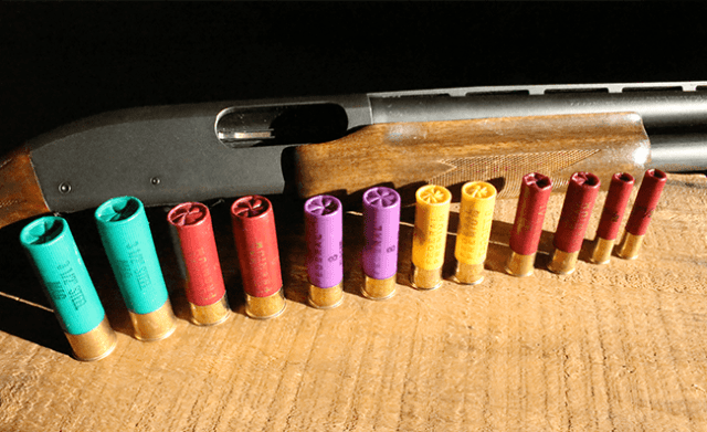 Shotgun with shotshells ranging from 12 gauge to .410