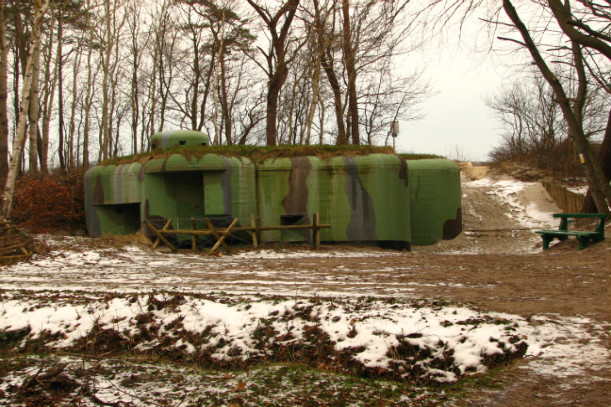 survival shelters - backyard bunker