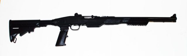 Marlin .22 - guns you can afford