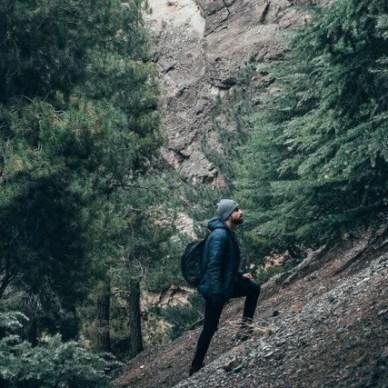 Man Hiking in Woods