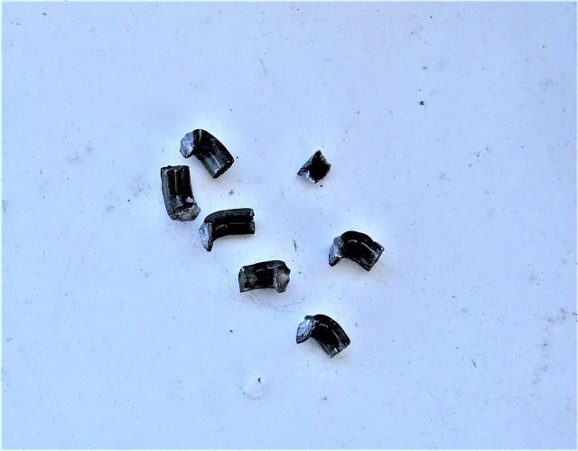 .22 Magnum Bullets